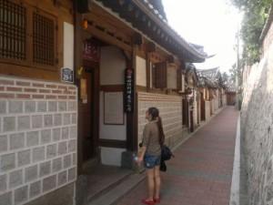 seul-guney-kore-gezisi-2011-15