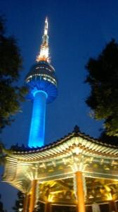 seul-guney-kore-gezisi-2011-25