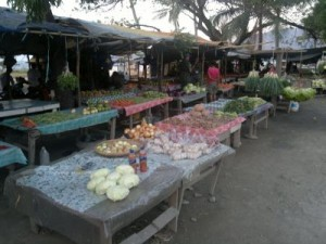 dogu-timor-gezisi-2011-10